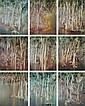 SIDNEY NOLAN (1917-1992) RIVERBEND SERIES (9)