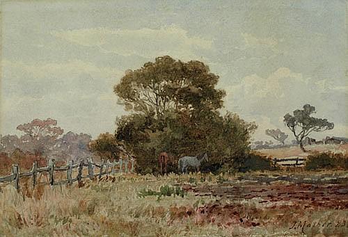 JOHN MATHER (1848-1916), THE CORNER PADDOCK,