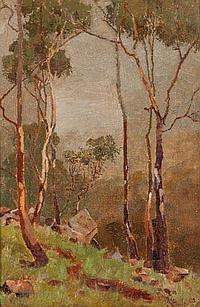 REGINALD (REG), COMLEY (1875-1939), BUSH GUMS,