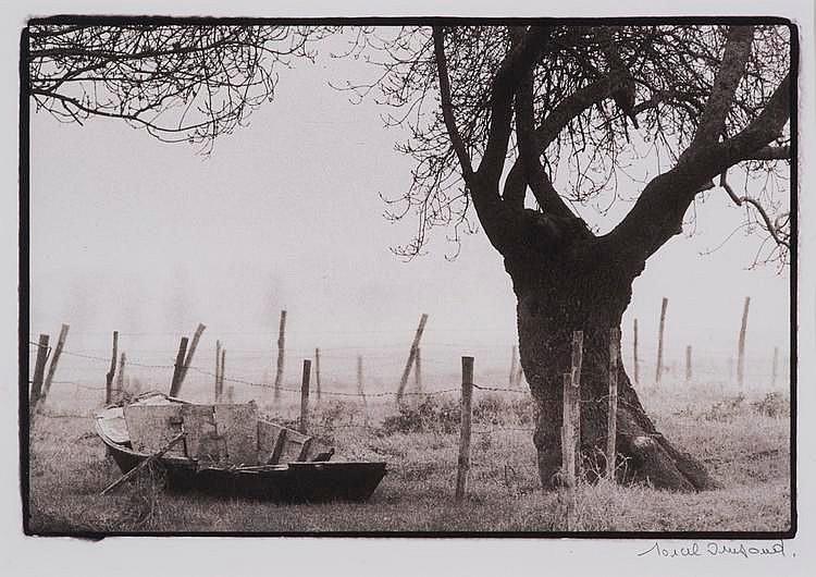 IMSAND Marcel, *1929 [CH].  Barque abandonnée au pied d'un arbre,