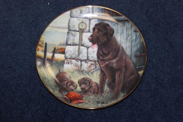 Collector's Plate