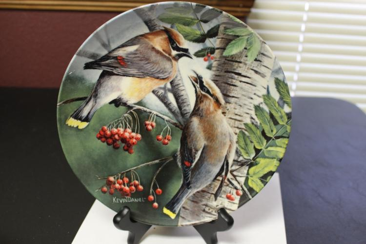 A Collector's Plate by Kevin Daniel