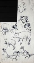 Janis Rozentals (1866-1917) - Pet sketch