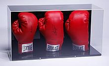 (3) Heavyweight autographed boxing gloves