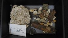 Mixed Lot of Relics-Lead, Minie Balls, Carved  Bullets, Primers, Enfield Rear Site, Etc