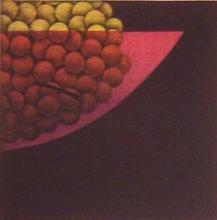 YOZO HAMAGUCHI Mezzotint Japanese Still Life 1978