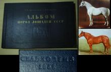 1953 Russian book horse breeds with pedigrees Very Rare