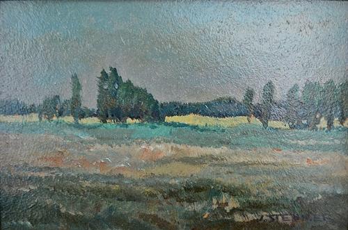 IOSIF STEURER Peisaj/Landscape
