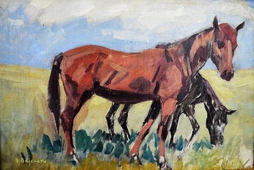 DAN BĂJENARU Cai la pãscut/Horses grazing