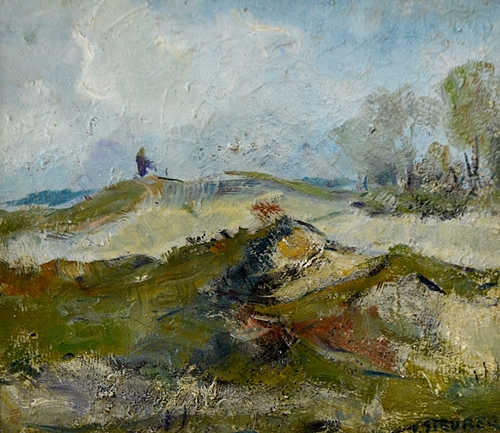 STEURER IOSIF Peisaj/Landscape