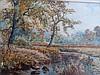 A E Boler. Forest scene with stream, watercolour,, A. E. Boler, Click for value