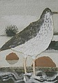 Mary Feddon (1915-2012). Bird in naturalistic