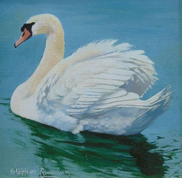 Stephen Cummins (b.1943). Lone swan, oil on board, signed, 12.5cm x 12.5cm.