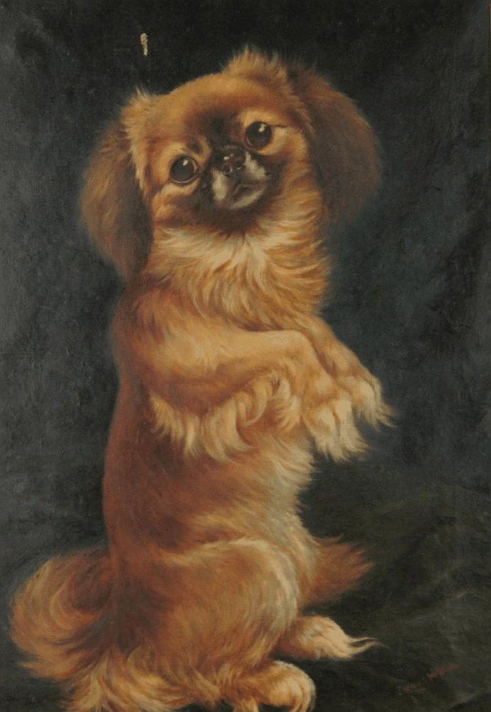 Louis Wain 1860 1939 Study Of A Long Haired Pug