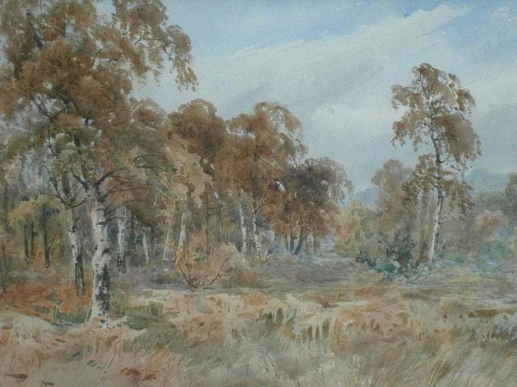 Charles Pigott (1870-1949). Woodland landscape,
