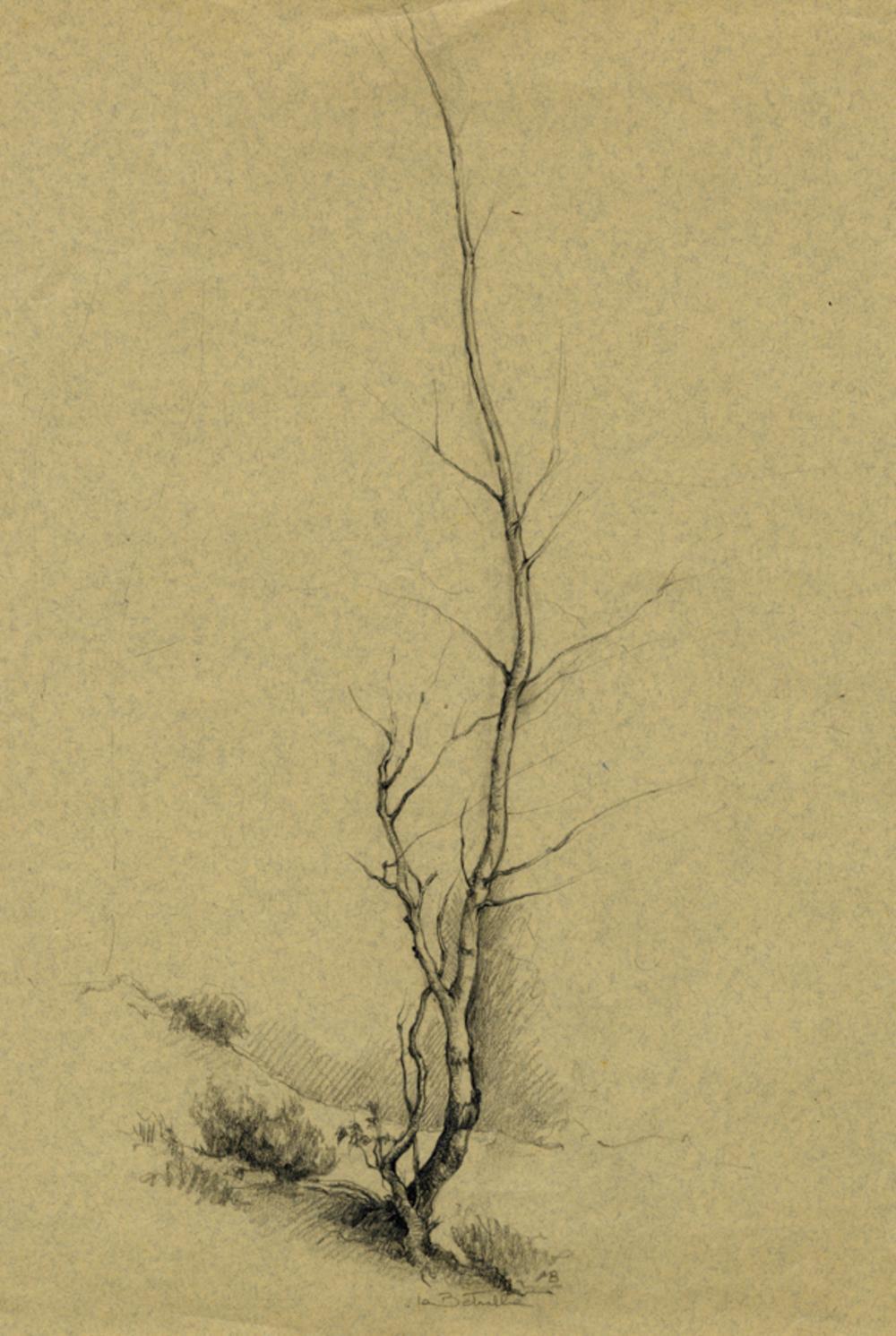 Marcello Boglione, Lotto composto di 5 disegni.
