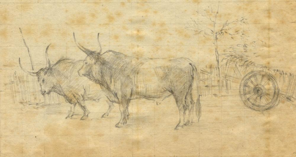 Giovanni Boldini [attribuito a], Buoi.