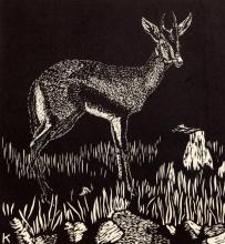 William Kermode (Grosvenor School) Gazelle 11 x 10in., unframed