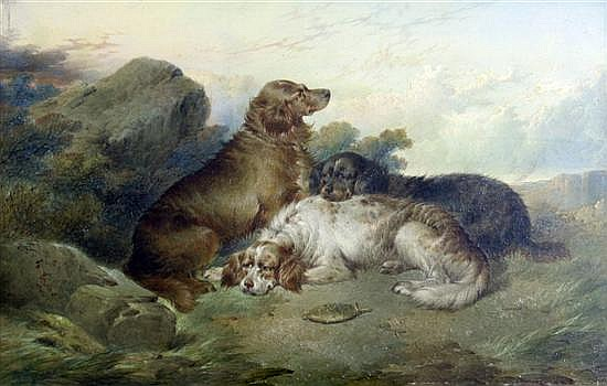 Paul Jones (fl.1856-1879) Setters at rest and Terriers rabbiting 8 x 12in.
