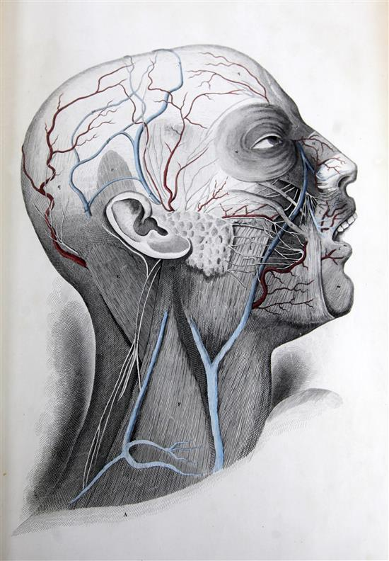 Lizars, John - A System of Anatomical plates of the Human Body,