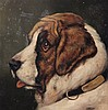 English School, 'Peggetty' and 'Mischief', portraits of a Bulldog and St Bernard 9 x 9in.