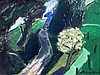 § Harold Mockford (1932-) The run-away horse 12 x 16in.