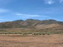 NV LAND, LARGE ACREAGE!
