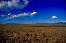 NEW MEXICO LAND, 10 AC., LUNA COUNTY, FORECLOSURE