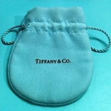 Beautiful Tiffany & Co Suede Blue Pouch