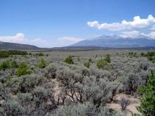 CO LAND, 5 AC., RANCHETTE - MOUNTAIN FORECLOSURE