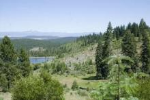 CA LAND, CALIF. PINES, RECREATION FORECLOSURE