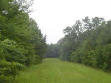 TX LAND, DEERWOOD LAKES, 50 MILES FROM FORECLOSURE