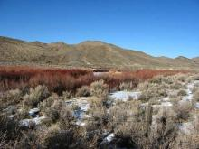 NV LAND, 40.87 AC., LARGE ACREAGE! FORECLOSURE