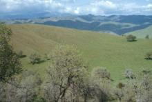 CA LAND, 1.35 AC., BEAR VALLEY FORECLOSURE