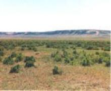 WY LAND, 40 AC., SWEETWATER, HUNTING