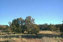 AZ LAND, 2.5 AC.