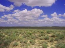 CO LAND, 45.33 AC., RANCH