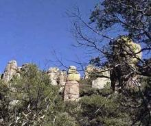 AZ LAND, 10 AC., RANCHETTE-APACHE, FORECLOSURE