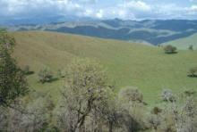 CA LAND, 2.5 AC., FORECLOSURE $$, FORECLOSURE