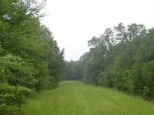 TX LAND, DEERWOOD LAKES, 50 MILES FROM, FORECLOSURE