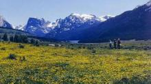 WY LAND, 40 AC., SWEETWATER, HUNTING, FORECLOSURE