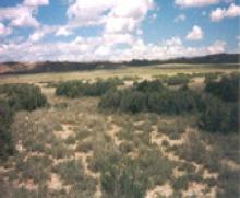 WY LAND, 40AC., SWEETWATER, HUNTING