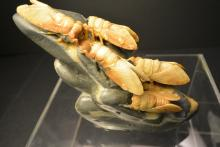 A Beautiful And Rare Chinese Antiques SHOU-SHAN stone carving five  Cicadas.
