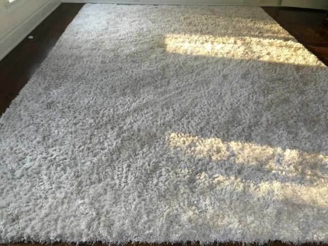 Custom Contemporary Stark White Shag Carpet