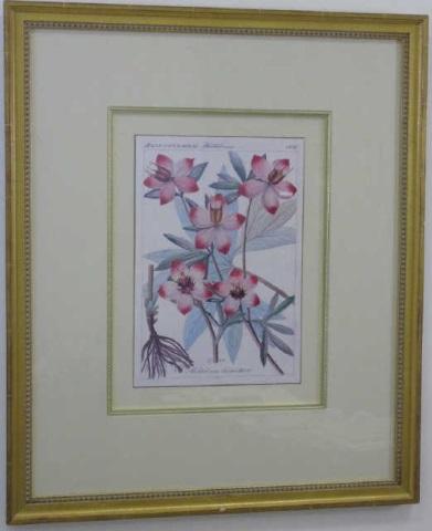 Vintage Framed Dutch Style Floral Still Life Print