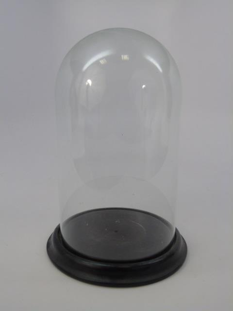 Antique Glass Display Cloche Dome