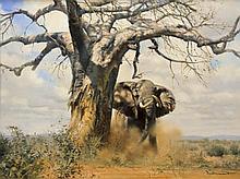 GRANT, DONALD - Elephant and Baobab Tree