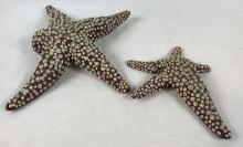 Lot 7: Hulk (2003) - Set of 2 Screen Used Starfish From Experiments Scene