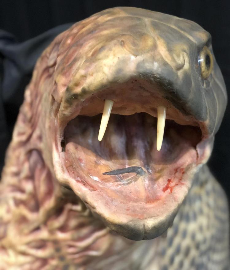 Lot 177: Hisss (2010) - Mallika Sherawat (Snake Woman) Mechanical Transformation Puppet