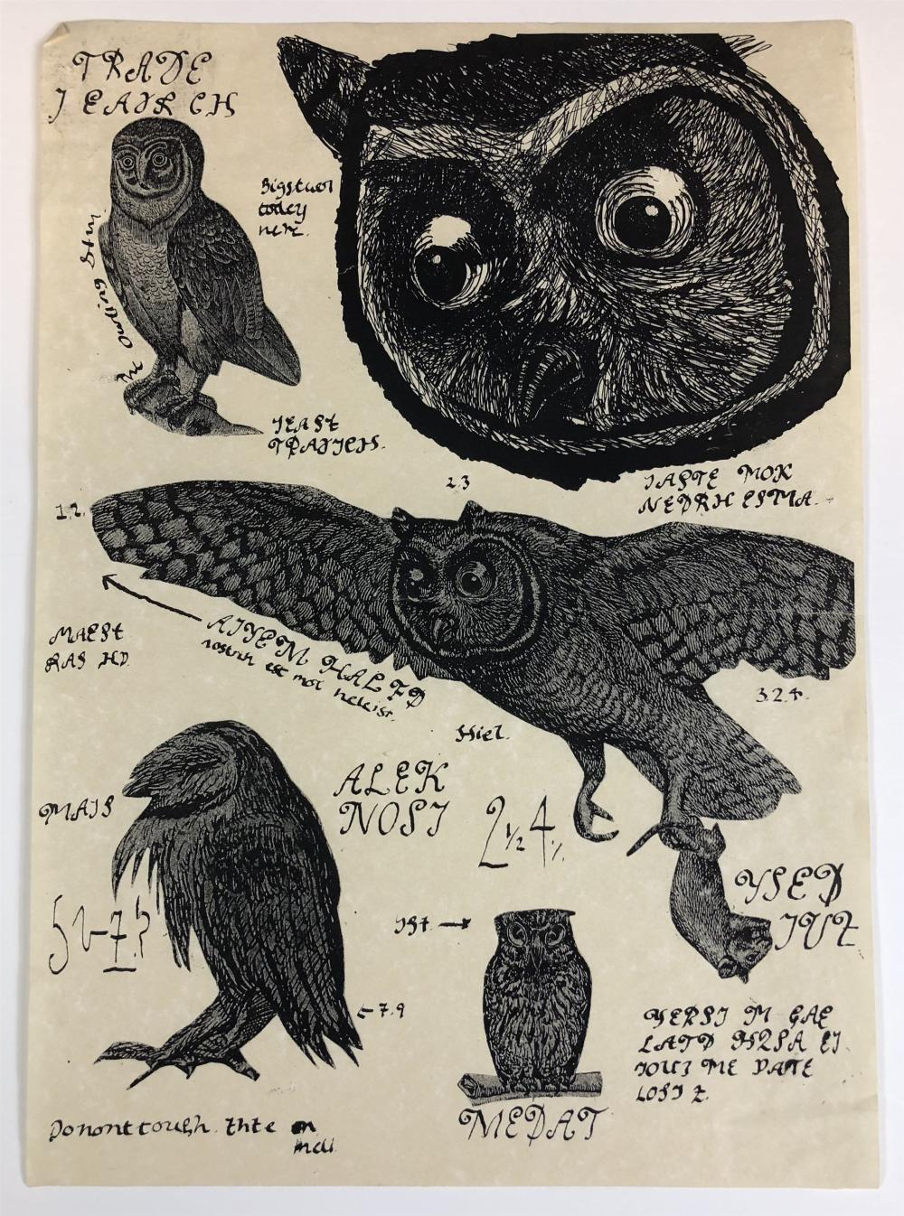Harry Potter and the Order of the Phoenix (2007) - Owl Drawings from Hogwarts